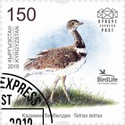 Bird of the Year - The Little Bustard - Set CTO