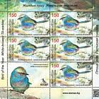 Uccello dell'anno (II). Il Tit-Warbler dalle sopracciglia bianche