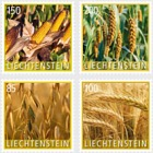 Crop Plants – Grain- (Set Mint)