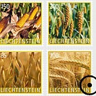 Crop Plants – Grain- (Set CTO)