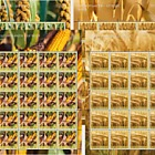 Crop Plants – Grain- (Sheetlet Mint)