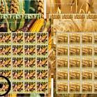 Crop Plants – Grain- (Sheetlet CTO)