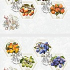 Old Fruit Varieties - Stone Fruit - (FDC Set)