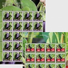 Crop Plants - Vegetables - (Sheet Mint)