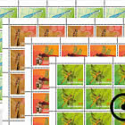 Dragonflies - II - Sheet x20 Stamps CTO