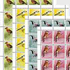 Native Songbirds - Sheets - Mint