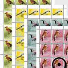 Native Songbirds - Sheets - CTO