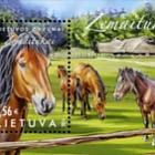 Lithuanian Horses. - Žemaitukai