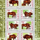 WWF. European Bisons