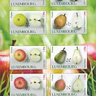 Fruit Varieties