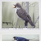 Rare Birds 2018