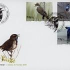 Aves Raras