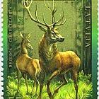 拉脱维亚的动物 - 鹿,2006年