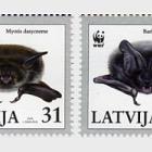 2008年世界野生动物基金会 - 蝙蝠