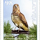 Birds of Latvia - Short-Toed Eagle 2011