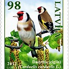 Birds of Latvia - Goldfinch 2012