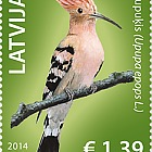 Latvian birds - Hoopoe 2014
