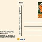 2012年辛德芬根世博会卡