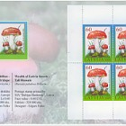 EXPO Booklet - Wealth of Latvian Forests - Russula 2009