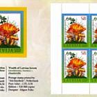 2007年世博会小册子 - 拉脱维亚的森林财富 - 鸡油菌