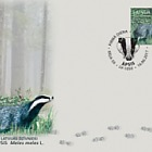 Animals of Latvia - European Badger