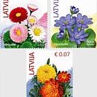 Flowers (Standart) Reprint 2019