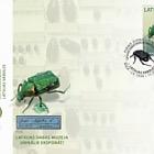 Exposiciones Unicas del Museo de Historia Natural de Letonia