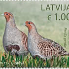 Aves de Letonia
