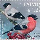 拉脱维亚鸟类
