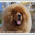 International Dog Show - Set Mint
