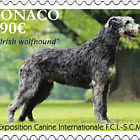 Exposition Canine Internationale 2020