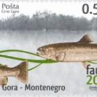 Fauna 2009
