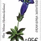 Flora 2016 - Velemun