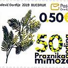 50ème Anniversaire du Festival de Mimosa