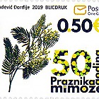 50 Jahre Mimosa Festival