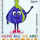 Sport, I Giochi dei Piccoli Stati d'Europa - Montenegro 2019
