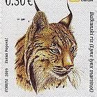 Protection de L'Environnement - Lynx des Balkans