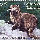 Fauna Otter - Lutra Lutra