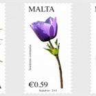 Malta Flora Serie II