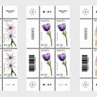 Malta Flora Series II