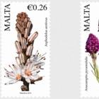 Flora Series III