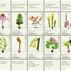Giardini botanici nei Paesi Bassi