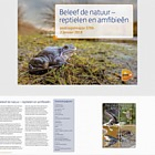 Experience Nature - Reptiles and Amphibians - (SB 570B)