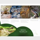 Experience Nature - Reptiles and Amphibians