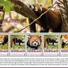 Endangered Mammals 2018 - Rode Panda