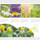 Experience Nature - Stinzen Plants