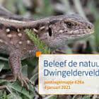 Experience Nature - Dwingelderveld 626a