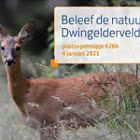 Experience Nature - Dwingelderveld 626b