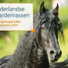 Dutch Horse Breeds - 640A
