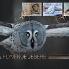 Birds 2018 - (Golden FDC)